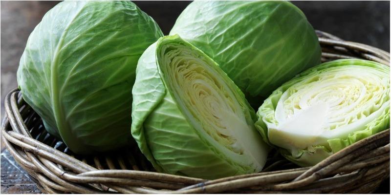 Chữa viêm loét dạ dày bằng bắp cải mà ít ai ngờ tới
