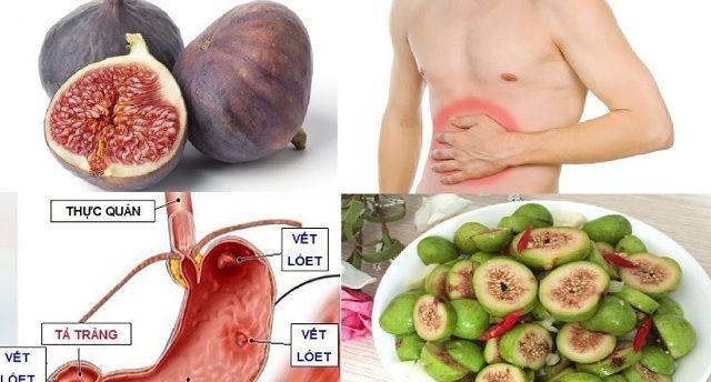 Công dụng của quả sung điều trị viêm đau dạ dày
