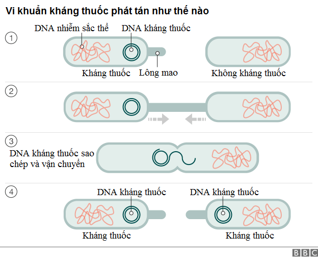 phuong-phap-dieu-tri-viem-da-day-hp-khang-thuoc